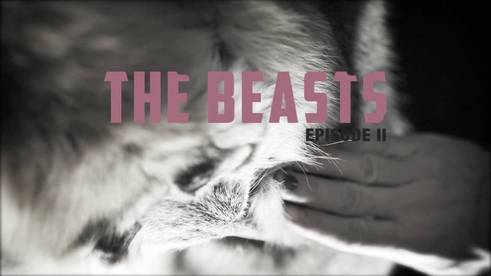 The-Beasts-Fashion-Victim